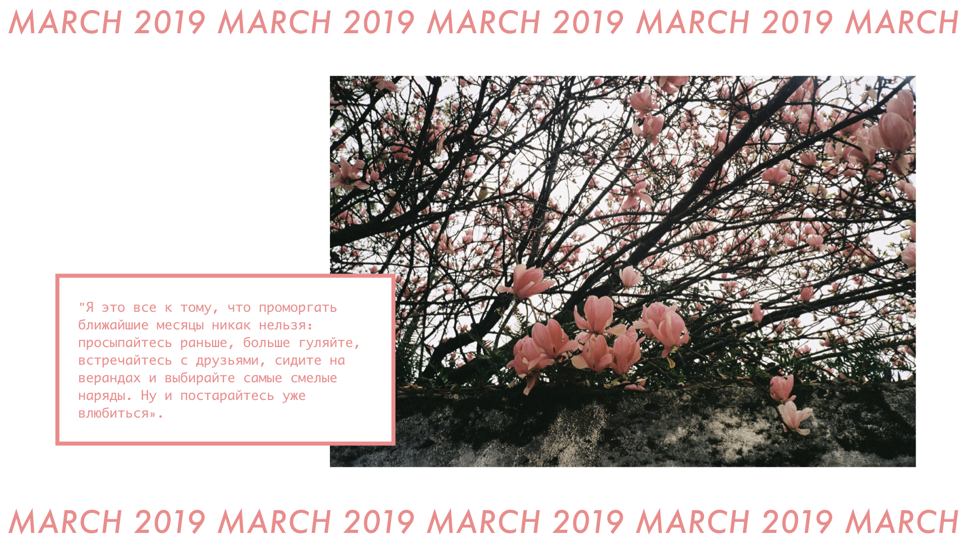 CURRENT JAMS: MARCH 2019